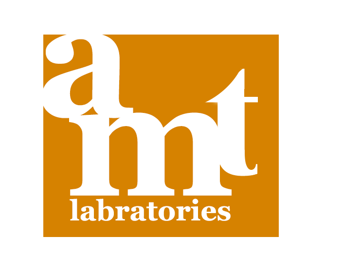 AMT Labs